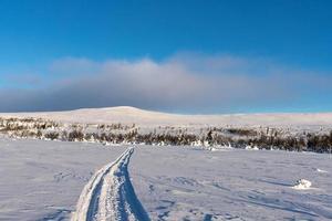 schneebedeckte schwedische Landschaft foto