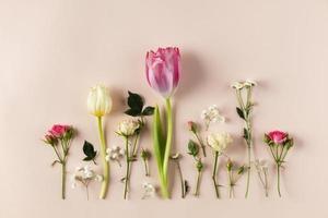 Draufsicht Blumensammlung auf Tisch foto