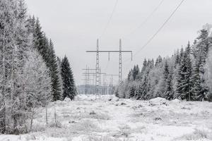 Stromleitungen im Winter foto
