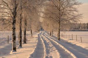 verschneite Landstraße an einem sonnigen Wintertag foto