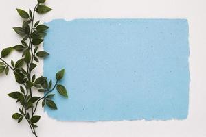 künstlicher grüner Zweig nahe blauem zerrissenem Papier auf weißem Hintergrund foto