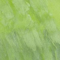 leerer monochromatischer grün gemalter Hintergrund foto