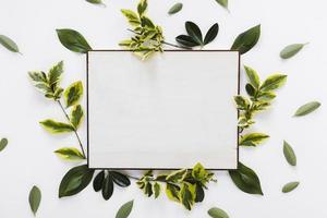 flach gelegte Papierkartenschablone mit Blättern foto