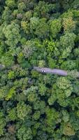 Luft Draufsicht Auto, das durch den Wald auf Landstraße fährt, Blick von Drohne foto