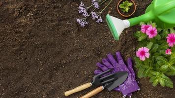 Gießkanne mit Gartengeräten foto