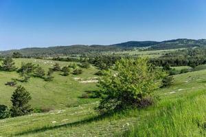 Landschaft mit Hügeln mit grünem Gras bedeckt foto