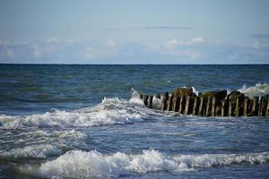 Seelandschaft mit Wellenbrechern. Zelenogradsk, Russland foto