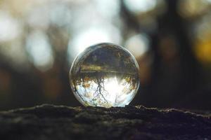 eine Linsenkugel in einem Herbstwald foto