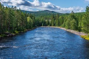 Fluss fließt durch einen Wald foto