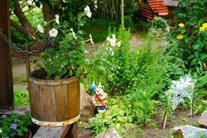 ländliche Landschaft mit Blumen in einem hölzernen Eimer foto