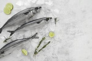 ganzer Fisch auf Eis mit Limette foto