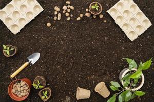 Draufsicht Gartengeräte und Blumentopf foto