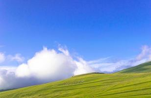 grüner Hügel mit blauem Himmel foto