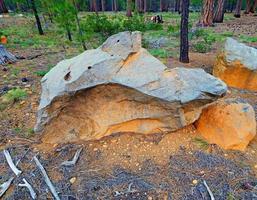 Waldsteine am Pole Creek Camp südwestlich von Schwestern oder foto