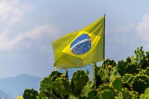 Die brasilianische Flagge verblasste im Freien über einem Kaktusbaum an einem Strand in Rio de Janeiro. foto