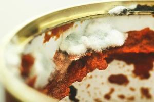 Nahaufnahmebild einer offenen Dose mit schimmeliger Tomate foto
