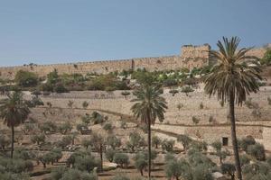Terrassen des Kidron-Tals und der Mauer der Altstadt in Jerusalem in Israel foto