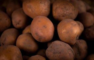 Nahaufnahme abstrakter strukturierter Hintergrund von frischen Kartoffeln foto
