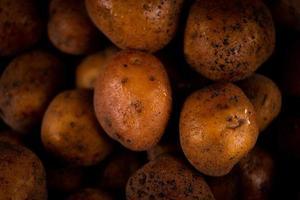 Nahaufnahme abstrakter strukturierter Hintergrund der frischen nassen Kartoffeln foto