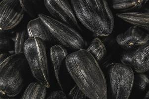 schwarze Sonnenblumenkerne im Makro foto