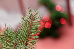 Nahaufnahme des Weihnachtsbaumes mit rotem Bokeh foto