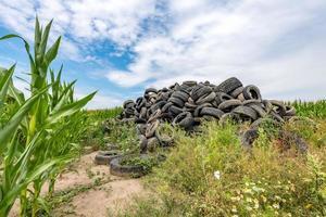 alte kaputte Autoreifen stapelten sich auf einem Berg in einem Maisfeld foto