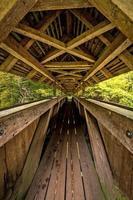 lange Fußgängerbrücke mit Holzbalken, Dach und Graffiti foto