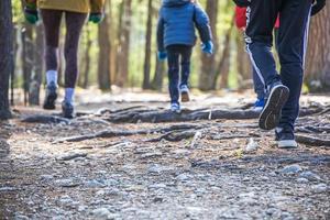 Kinder gehen einen Weg durch die Mitte des Waldes foto
