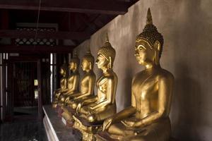 Stadt, Land, MM TT, JJJJ - goldene Buddha-Statuen im Tempel foto