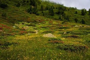 Landschaft in der Nähe des Levico-Sees, Trento, Italien foto