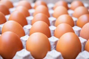 eine Nahaufnahme von rohen Hühnereiern in Eierplatten foto
