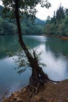See im Berg foto