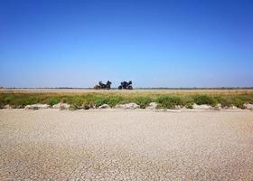 Wüstenstraße mit zwei geparkten Motorrädern foto