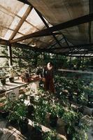 eine Frau, die eine Maske trägt und Gartenarbeit macht foto