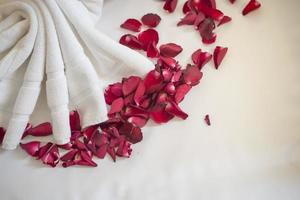 Hochzeitshintergrund mit roten Rosen foto
