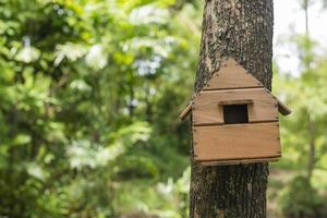 Vogelhaus im Baum foto