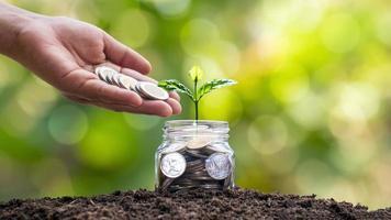 ein Baum, der aus einer Geldflasche wächst und eine Hand, die eine Münze gibt foto