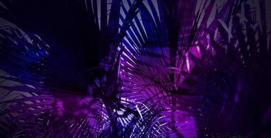 abstraktes tropisches Sommerneonlichtdesign des Palmblätterhintergrundes foto