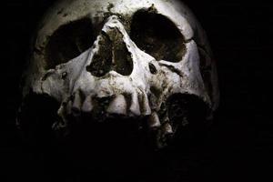 Totenkopf auf dunklem Hintergrund foto