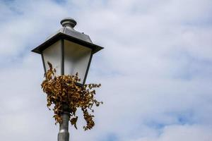 eiserner Laternenpfahl mit Efeu foto