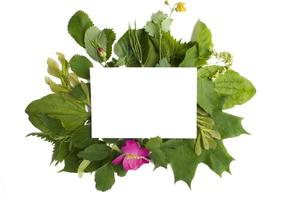 eine Komposition aus weißem Papier und Ästen mit grünen Blättern auf weißem Hintergrund. Billboard, Poster-Layout für Ihr Design. flaches Layout, Ansicht von oben, Textfreiraum foto