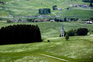 Glockenturm und grüne Weiden foto