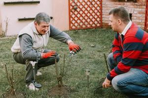 junger reifer Erwachsener, der älteren Männern bei Gartenarbeit hilft foto