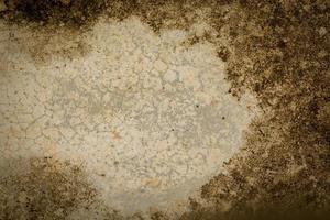 brauner zementboden textur hintergrund text eingeben foto