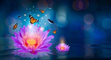 Schmetterlinge fliegen um den lila Lotus, der auf dem Wasserbokeh schwimmt foto