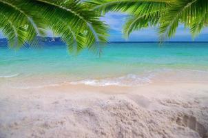 Sommerurlaub weißer Sandstrand mit Platz für Text Kokosblätter Heckrahmen Meerblick energetischer Boden foto