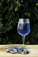 Schmetterlingserbse blaues Kräutergetränk frisch mit Weinglas vertikal foto
