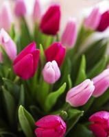 schöner Tulpenstrauß foto