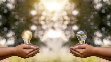 Mädchenhand, die energiesparende Glühbirne hält und Hand, die kleine Bäume hält, die in energiesparende Glühbirnen gepflanzt werden, grünes Energiekonzept foto