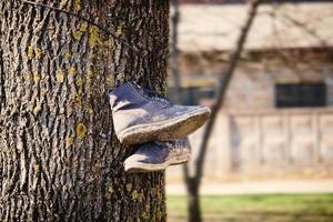 alte schmutzige Stiefel, die am Baumstamm mit strukturierter Rinde auf Gebäudehintergrund hängen foto